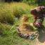 L'Agricoltura è un bel mestiere...nell'Isola di Pemba è ancora più bello!